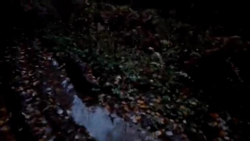 Ведьма из Блер 4