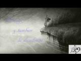 Novalis Deux - Scratches and Sin Мультфильм о духовном развитии SATURNUS A LONELY PASSAGE Coma Waering (5 в 1)