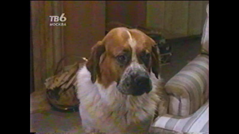 Т/С Дом собаки 12 серия (1991г)