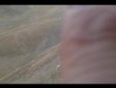 Кандидаты на шашлычек в Хевсурских горах