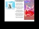 Мы о тебе помним......Видео посвещено Ане Корнелюк и ее котенку Мосе. Видео-презинтация о котенке..