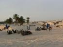 Привал в Сахаре Тунис