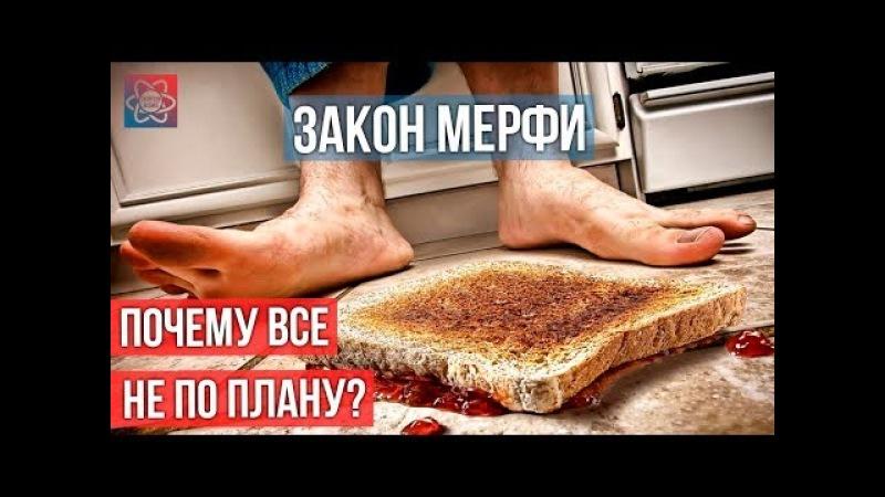Закон Мерфи - закон бутерброда | Когда всё не по плану [Shuffled Science]
