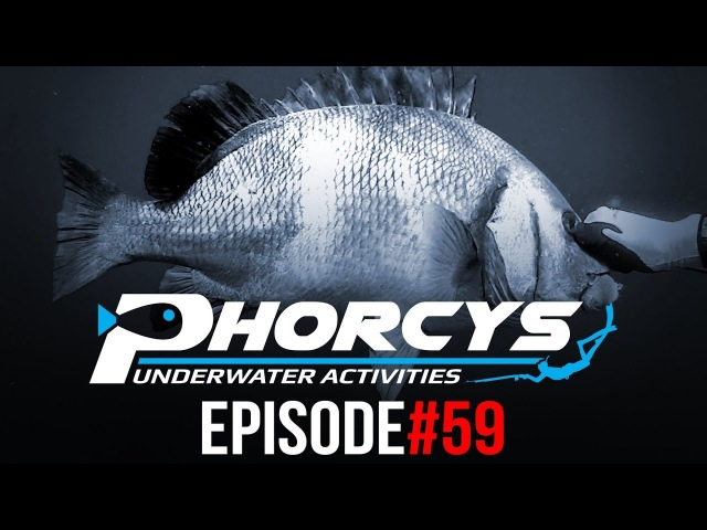 PHORCYS UNDERWATER ACTIVITIES - EPISODE59