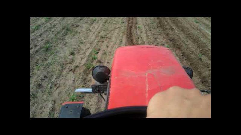 Прополка картофеля! Самодельным трактором