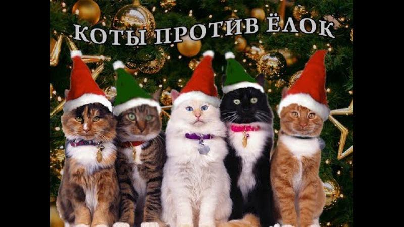 Коты против ёлок и месть ёлок