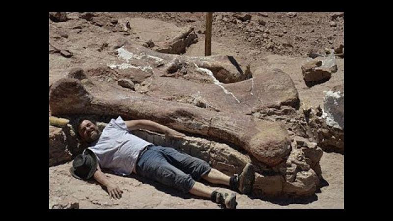 Кто жил до человека на Земле Запрещённая история человечества Документальный фильм