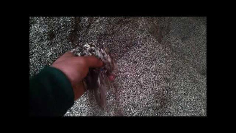 Шелуха лузга семечки подсолнечника купить в Крыму