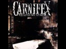 Carnifex - Dead In My Arms 2007 (Full Album)