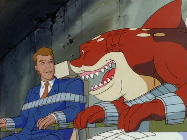 17 Первая акула