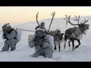 Северный полюс наш Экономика Арктики