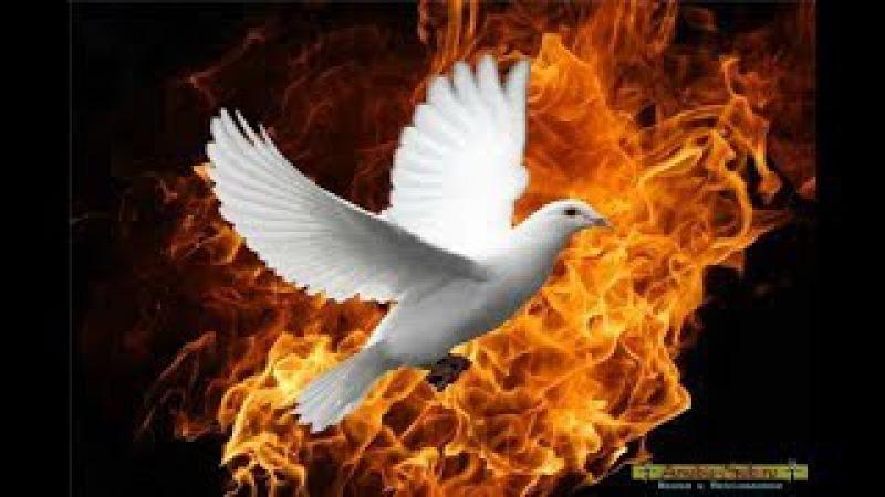 Пророчество месть Ливии Катастрофа в США затронет весь мир Россия победит битву...