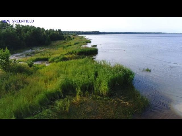 Кингисеппский р он Финский залив Пляж Выбье Вид сверху