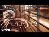 Alacranes Musical - Zapateado Encabronado #5