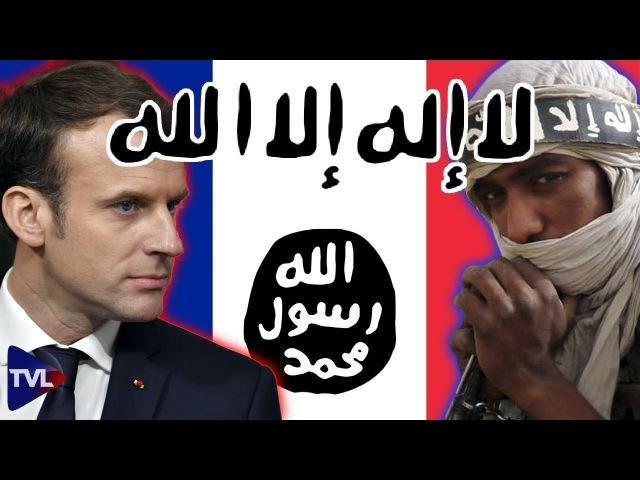 Le samedi Politique : Terrorisme et complicités politiques avec Jean-Loup Izambert