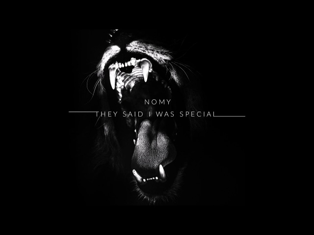Nomy - They said I was special /lyrics