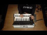 Moog Solo By Jes