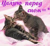 спокойной ночи, сладких снов, целую перед сном!