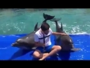 When Dolphins start jamming with you.