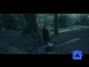 Охота за Голлумом  The Hunt for Gollum  2009  DVDRip