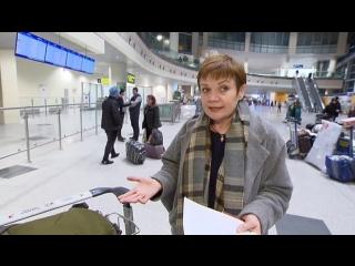 Российские журналисты вернулись домой из