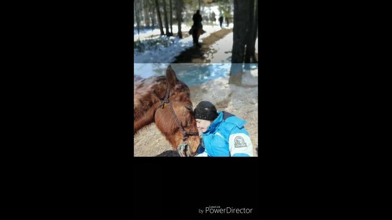 кони_HD.mp4