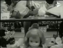 Sher - When my dollies have babies