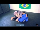 Gabriel Rainho and Vinicius Marinho - The counters to the counters of the Lasso Guard