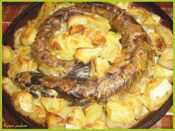 Рецепт с щукой рецепт с фото пошагово