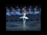 Виктория Терёшкина в роли Одетты/Одиллии в балете Лебединое озеро, #урокиХореографии
