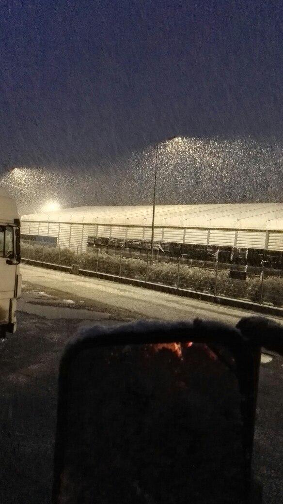 Как и обещали синоптики, в Бресте идёт снег. Первый в сезоне