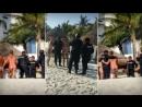 Мексиканских полицейских отстранили от работы из за любви к пышным формам туристок