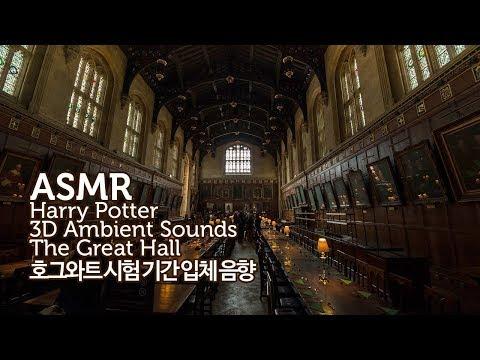 ASMR Harry Potter 공부할 때 듣는●호그와트 시험 기간-그레이트 홀 입체 음향 | Hogwarts The Great Hall 3D Ambient