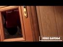 Дружелюбные соседи (VIDEO ВАРЕНЬЕ)
