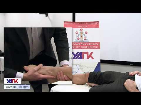 Техника тестирования ЗАДНЕЙ БОЛЬШЕБЕРЦОВОЙ мышцы