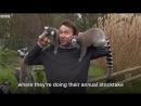 Лемуры (VHS Video)
