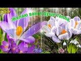 20 марта - День весеннего равноденствия! С праздником!