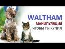 Жонглирование информацией от Waltham - или как склонить вас к покупке