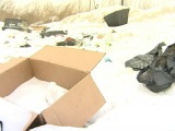 Жителей Красноярского края призывают доносить на тех, кто мусорит