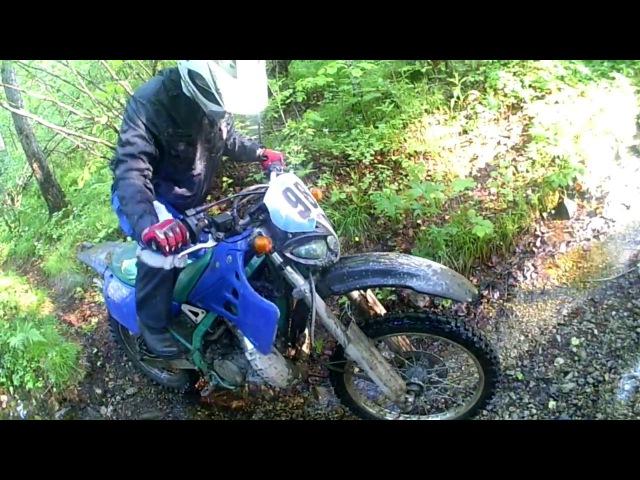 Покатушка - Kawasaki KDX и Honda Degree.