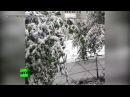 Зима близко в Якутии выпал первый снег