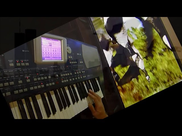 Рома Жуков -Перелётные птицы (Korg Pa 500) RussianDisco