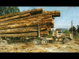 Best Logging Truck Drivers Skill With Dangerous Extreme Fields (Part 1)
