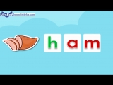 Word Families 2 Sam Has Ham  Level 1  By Little Fox