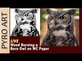 Pyrography LIVE Wood burning a Barn Owl on watercolor paper