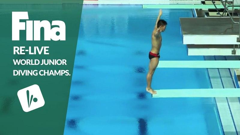 Re-Live - Day 2 Final - FINA World Junior Diving Championships 2016 - Kazan (RUS)