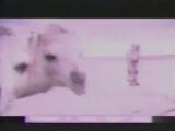 Старая реклама батончика Пикник