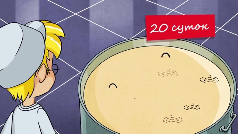 НОВАЯ СЕРИЯ ЗАЧЕМ В СЫРЕ ДЫРКИ- - Профессор Почемушкин познавательные мультфильмы для детей - YouTube