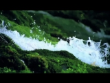 Джеймс Ласт - Одинокий пастух (инструментал, панфлейта)