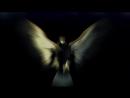 Информация о расе инопланетян Лирианцы созвездие Лиры и происхождение человека